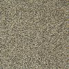 Gulistan Stainmaster Norwalk Carpet