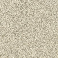 Dixie Stainmaster Morning Reflections Carpet