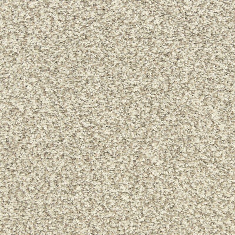 390ae4b15 Dixie Stainmaster Morning Reflections Carpet | RC Willey Furniture Store