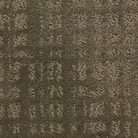 Dixie Stainmaster Swift Current Carpet