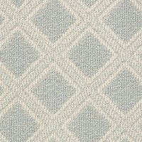 DSW.SCOUT Tuftex Stainmaster Scout Carpet