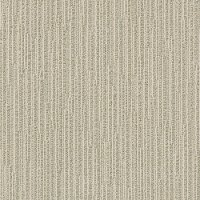 DSW.CHASE Tuftex Stainmaster Chase Carpet
