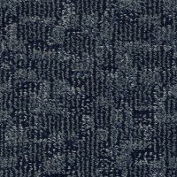 DSW.PAW-TAY Tuftex Stainmaster Paw-Tay Carpet